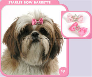 Pink Blue Starlet Crwon Pet Bows, Hair Clip, Dog Cat Charms pictures & photos