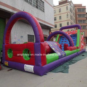 Inflatable Tunnel Bouncer/Inflatable Bounce House pictures & photos