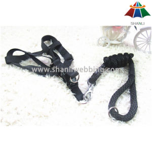 Hot-Sale High-Quality Solid Pearly-Luster Color 10mm Polyester/Nylon Leash & 15mm Adjustable Harness pictures & photos