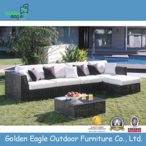 Stylish Patio Sofa Set with Coffee Table (TY0015)