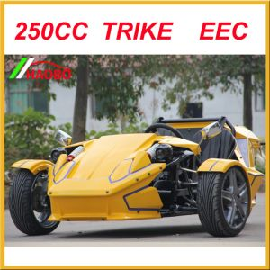 Smart Trike Motorcycle with 2 Seats pictures & photos