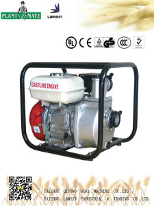 Agricultural/Industrial Water Pump with ISO9001 (WP-30) pictures & photos