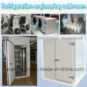 Refrigeration Engineering Cold Room Storage pictures & photos