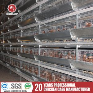 Hot Sale New Design Galvanized Layer/Broiler Chicken Cages for Kenya Poultry Farming Equipment pictures & photos