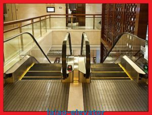 Heavy Duty Escalators pictures & photos