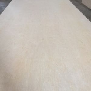 4X8 Cheap Price White Birch Plywood for Furniture pictures & photos