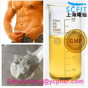 Anabolic Steroid Equipoise/Boldenone Undecylenate Yellow Liquid pictures & photos