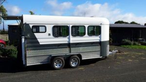 Horse Trailer for 3 Horses pictures & photos