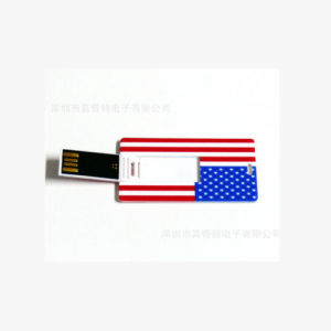 Card Business Advertising USB Display USB Flash Drive Large Print Logo 256GB pictures & photos