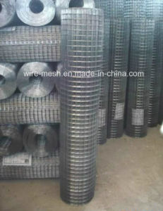 Galvanized Welded Rabbit Cage Wire Mesh pictures & photos