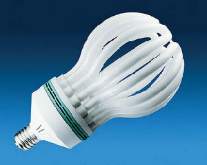 4u 5u E27 B22 Lotus Energy Saving Lamp pictures & photos