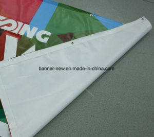 13oz High Resolution Outdoor Advertising Vinyl PVC Banner (SS-VB101) pictures & photos
