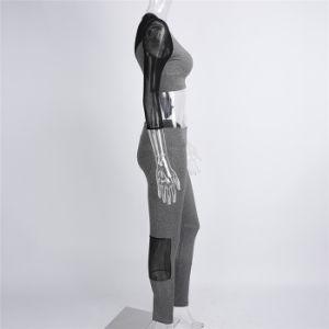 Hot Sale 2PCS/Set Women Yoga Sets Fitness Seamless Bra+Pants Leggings Gym Workout Sports Wear pictures & photos