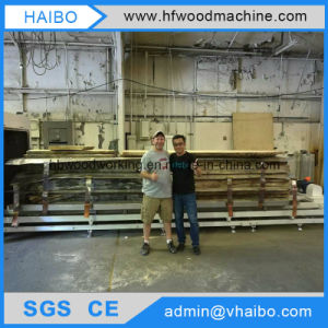 Vacuum Oven Machinery and High Frequency Heated to Dry Wood or Timber