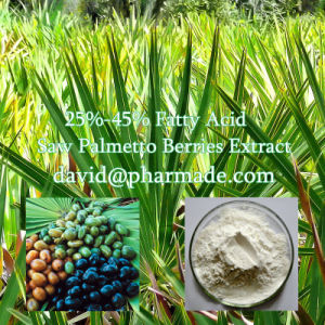 25%-45% Fatty Acid 80 Mesh Powder Saw Palmetto Berries Extract pictures & photos
