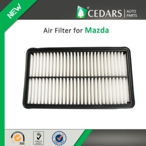 China Auto Parts Quality Supplier Air Filter for Mazda pictures & photos