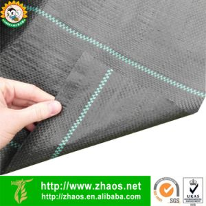 High Density Sulzer Looms Polypropylene Geotextile Weed Membrane for Outdoor Use pictures & photos