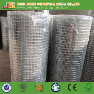 Welded Type Animal Use Wire Mesh Roll pictures & photos