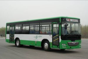 Bus and Bus Chassis (SLG6100T3GE)