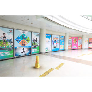 High Quality Indoor Advertising Banner pictures & photos