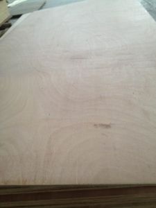 BS1088 Plywood pictures & photos