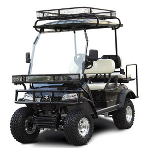 Electric Hunting Car Smart Buggy with Roof Storage Rack (DEL2022DL2Z, 4-Seater) pictures & photos