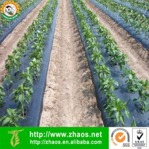 Blowing PE Black Mulch Film for Agriculture or Horticulture pictures & photos