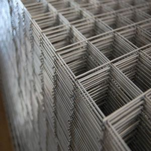 Welded Wire Mesh -15 (TYE-15) pictures & photos