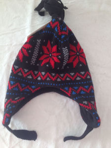 Snow Knitted Earflap of Tassel