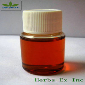 Lovage Oil (Chuanxiong oil)