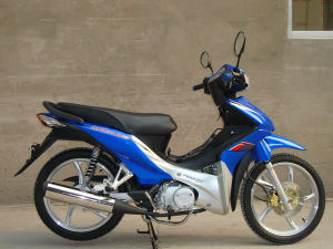 Shogun Scooter (WJ110-9II)
