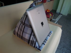 Bean Bag Holder for iPad, Ideal for Premiums and Promotional Purposes pictures & photos