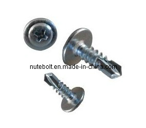 stainless steel truss head self drilling screw pictures & photos