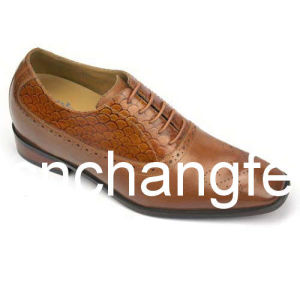 2011 New Style Men Dress Shoes / Leather Shoes (K6572)