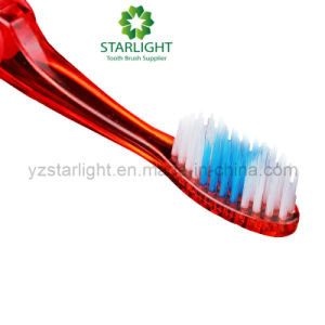 Collapsible Foldable Toothbrushes pictures & photos