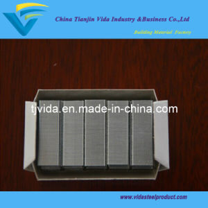 24/6 Staples From Factory with Excellent Quality pictures & photos