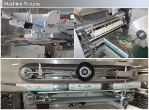 Automatic High Speed Flow Shrink Wrapper Packing Machine pictures & photos