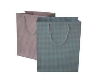 Paper Promotion Bags
