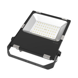 50W Outdoor/Indoor LED Flood Light