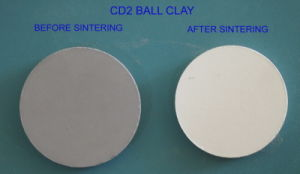 CD2 Ball Clay