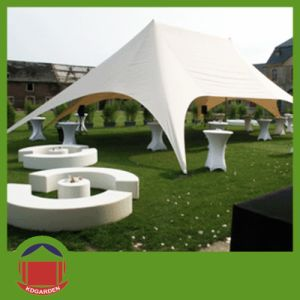 Outdoor Hot Sale Star Tent for Exhibition pictures & photos