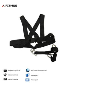 Speed Sled Weight Pulling Harness Sled Harness for Pulling Power Sled Harness Harness for Sled pictures & photos