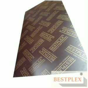 Brwon Film Faced Plywood with Logo, for Construction Formwork pictures & photos