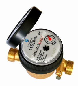 Single Jet Water Meter (D4-8+1-2) pictures & photos