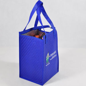 PP Non Woven or Ployester Cooler Bag/Picnic Cooler Bag/Wine Cooler Bag (MECO4 58) pictures & photos