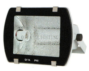Flood Light (QYTG300-B single) pictures & photos