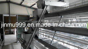 a Type Automatic Chicken Cage System for Layer Poultry Farm pictures & photos