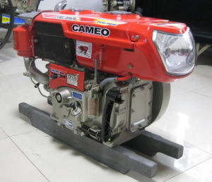 Diesel Engine CP120-2/12HP pictures & photos