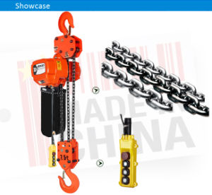 Wholesale 1t, 2t, 3t, 5t, 3m~130m Electrical Crane Hoist pictures & photos