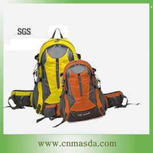 600D Polyester Sports Backpack (WS13B225)